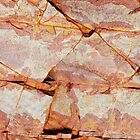 Rock Abstracts of Ormiston Gorge #21 by Lexa Harpell
