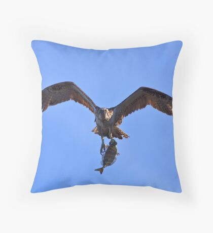 Osprey (with Lunch) Throw Pillow