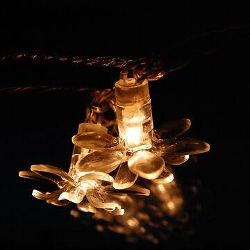 Fairy Lights by MrJintro