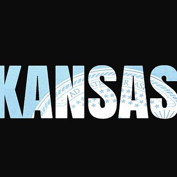 Kansas License Plate by VsTheInternet