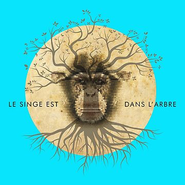 LE SINGE EST DANS L'ARBRE (THE MONKEY IS IN THE TREE) 'O' LEVEL FRENCH LESSONS FROM THE 1980s by CliffordHayes
