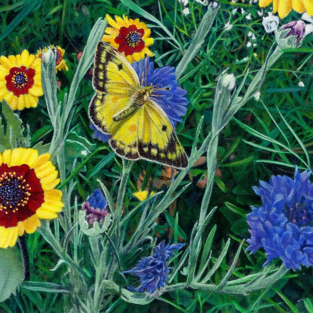 Butterfly Wildflowers Floral Painting  by Walt Curlee