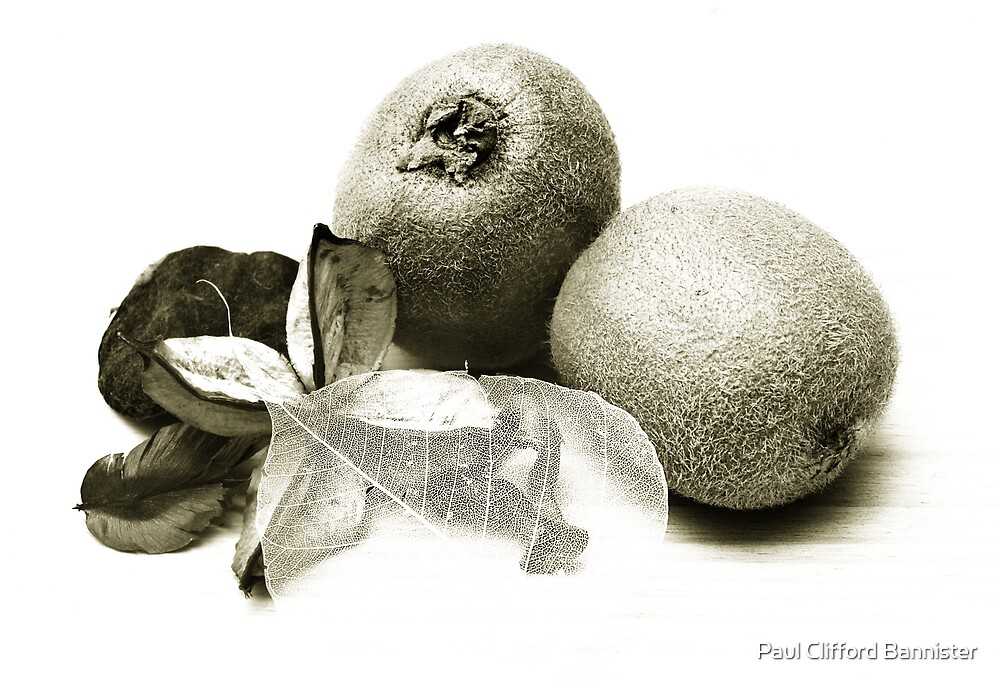 Kiwi fruit by Paul Clifford Bannister