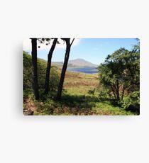 Mayo countryside Canvas Print