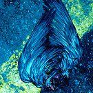 Fallen Winged Beauty by Mario  Scattoloni
