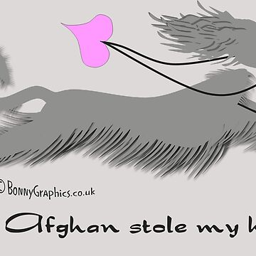 An Afghan stole my heart!  by BonnyGraphics