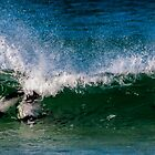 Surf bay display team by Terry Mooney