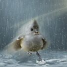 Just Dancing In the Rain by Penny Odom