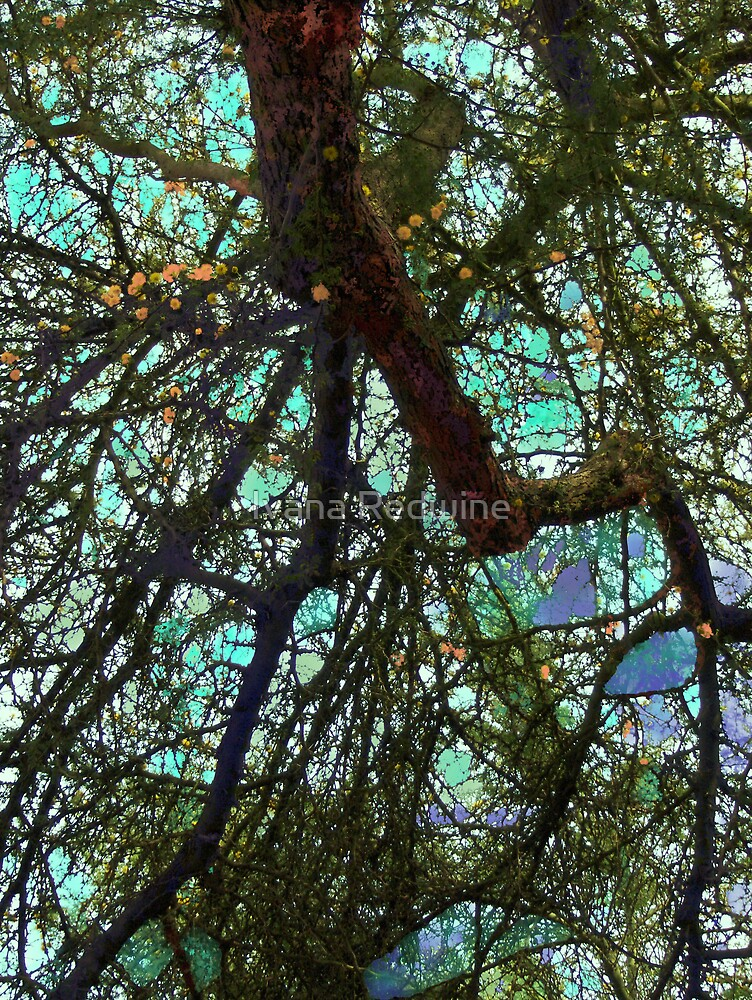 Fauvist Composition: Lacy Branches Cascading Downward #2 by Ivana Redwine