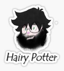 Hairy Wizard Sticker