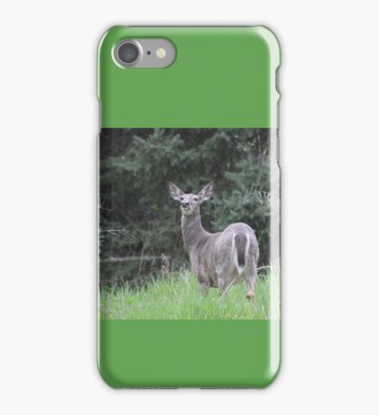 Lake Mendota Deer iPhone Case/Skin
