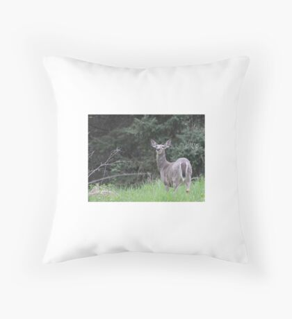 Lake Mendota Deer Throw Pillow