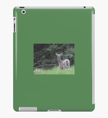Lake Mendota Deer iPad Case/Skin