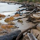 Stormy Beach by strangers