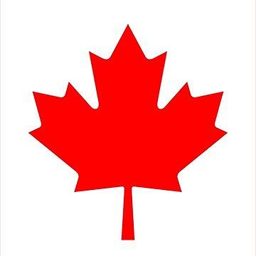 Canada Flag by DarienBecker