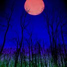 """"""" Howling at the Moon"""" """" by canonman99"""