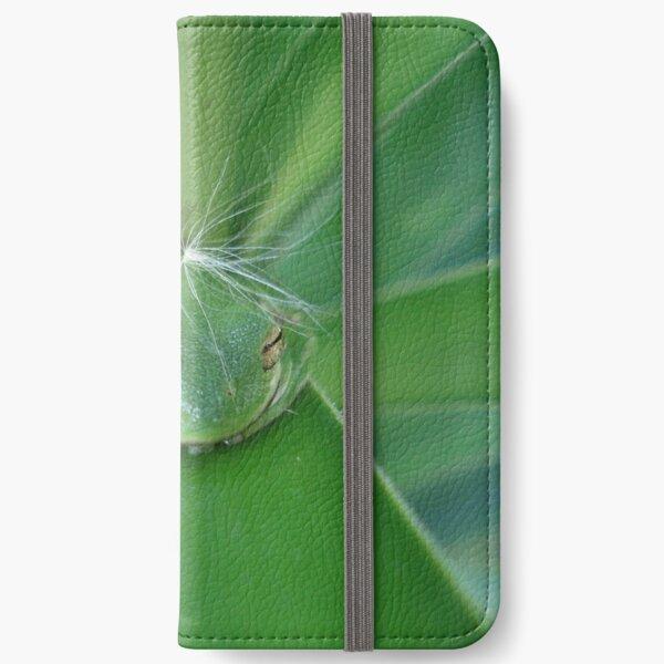 Einstein's Wiglet iPhone Wallet