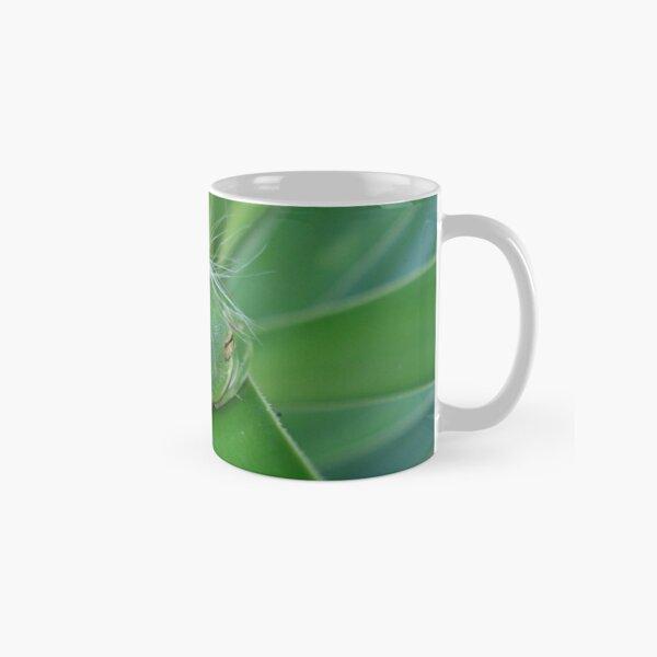 Einstein's Wiglet Classic Mug