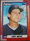410 - Gary Wayne by Foob's Baseball Cards