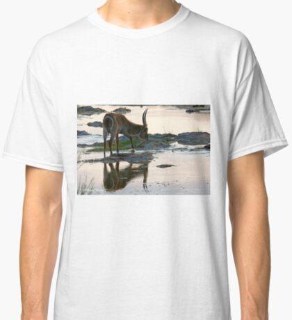 A REFLECTION - THE WATERBUCK – Kobus ellipsiprymnus Classic T-Shirt