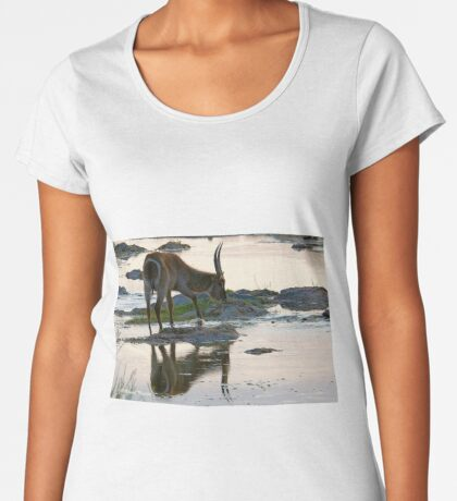 A REFLECTION - THE WATERBUCK – Kobus ellipsiprymnus Women's Premium T-Shirt