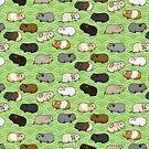 Harmonious Pigs - Guinea Pigs on a Green Field by LunaAndromeda