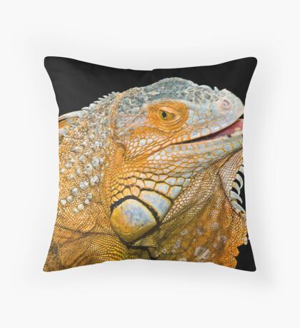 Gorgeous Throw Pillow