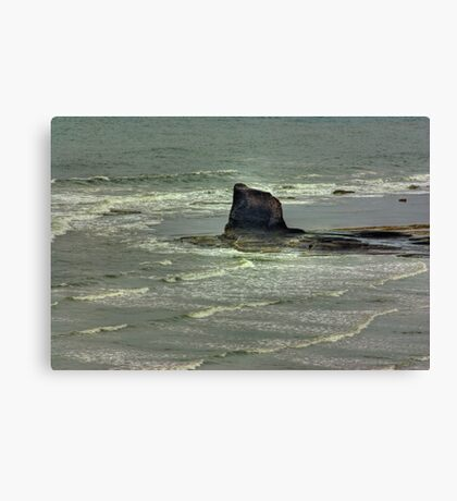 Black Nab - Saltwick Bay. Canvas Print