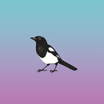 Magpie pen drawing	 by Bwiselizzy
