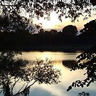 Windowed Lake at Sunset by Charmaine Bailey
