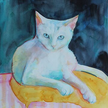 A cat called snowman by robynbradshaw