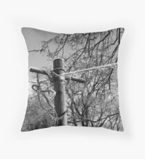 Clothesline Throw Pillow