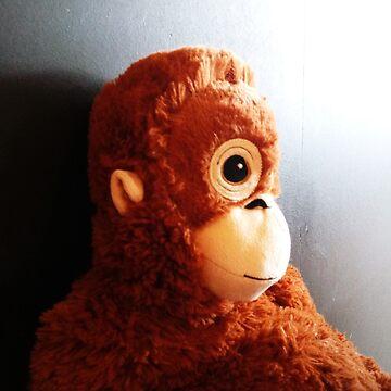 Bae the Monkey by jeremydwilliams