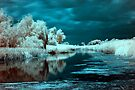 Storm in infrared. by zolim