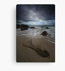 Illegal Alien Canvas Print