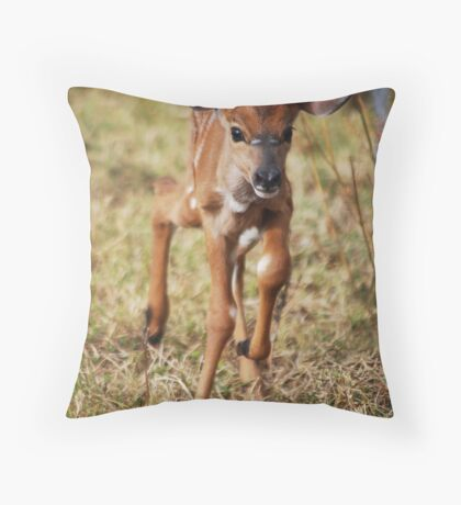 I'm 3 days Old Throw Pillow