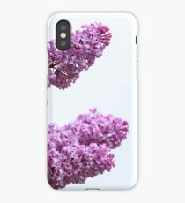 Lilacs in full bloom  iPhone Case