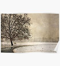 Wintry days Poster