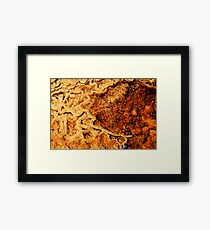 Water maps Framed Print