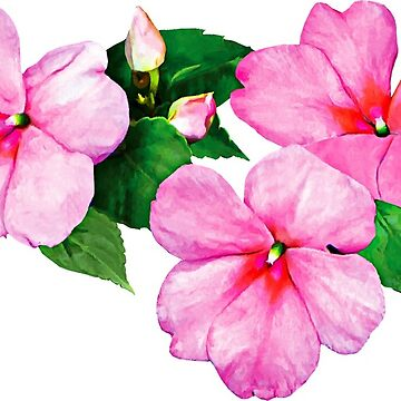 Pink Impatiens with Buds by SudaP0408