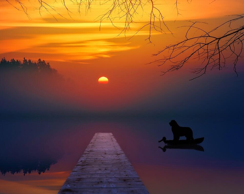 Sunset Newf by Christine Mullis