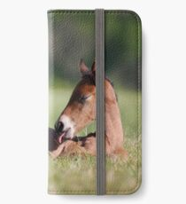 Andalusian Colt iPhone Wallet/Case/Skin