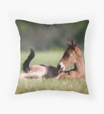 Andalusian Colt Throw Pillow