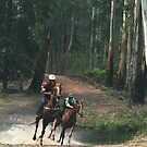 Horses Mountain Racing - Noojee, Gippsland Victoria by Bev Pascoe