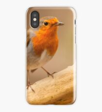 Robin with catch iPhone Case