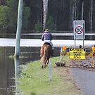Flood Transport in Maclean by Melissa James