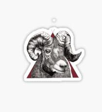 The Humble Bighorn Sheep Sticker