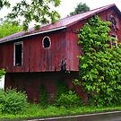 A Barn with Character.... by Larry Llewellyn