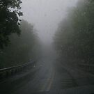 Mountain Fog and Rain.... must press on... by Larry Llewellyn
