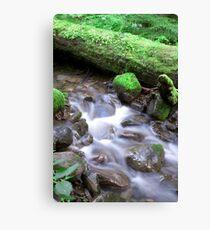 Nature Flow Canvas Print